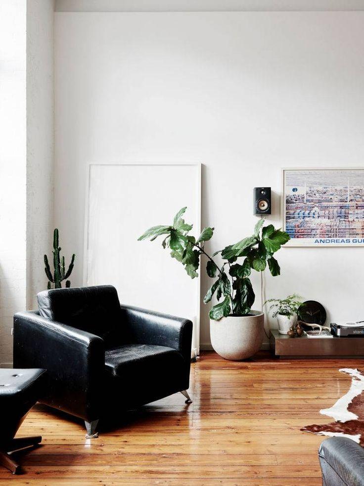 a modern, minimalist corner.