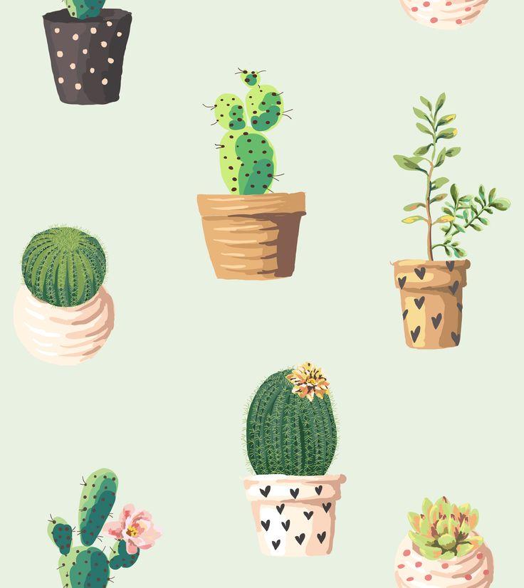 Cactos es mini plantas♥