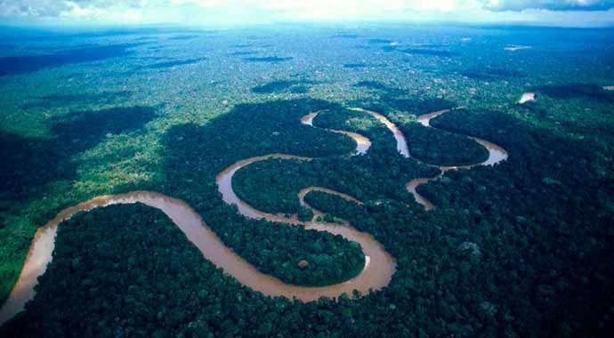 (adsbygoogle = window.adsbygoogle || []).push();   El Amazonas no deja de sorprendernos. No solo es el pulmón natural de la Tierra, es también el hábitat de cientos de especies. Según un nuevo informe de WWF,una nueva especie de animal o planta es descubierta cada dos días en la...