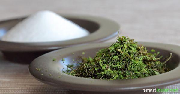 Aromatisches Maggikraut-Würzsalz für Eintöpfe, Suppen, Soßen und Co.