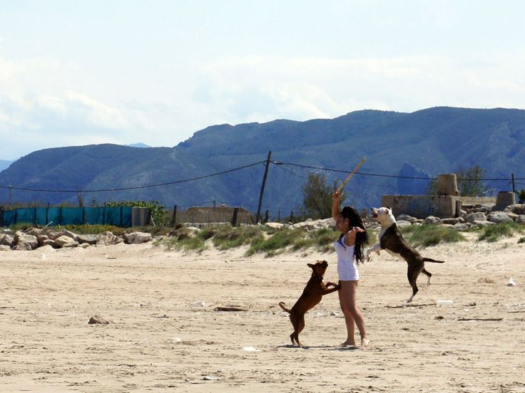 giochi da spiaggia - rita meneghin