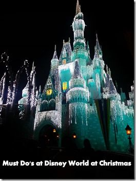 Don't miss a minute of holiday magic at Walt Disney World in November and December!