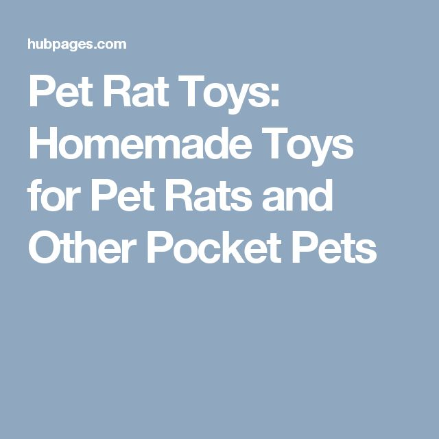 Pet Rat Toys: Homemade Toys for Pet Rats and Other Pocket Pets