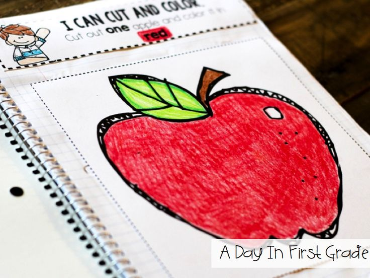love these kindergarten interactive notebook pages!