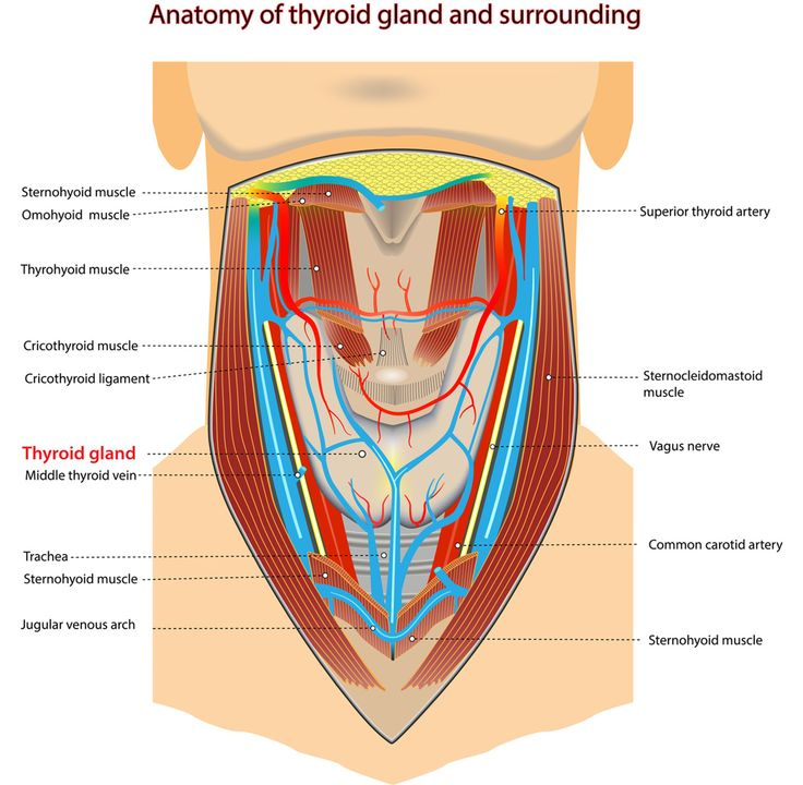 How To Control Hormones & Fix Thyroid Dysfunction