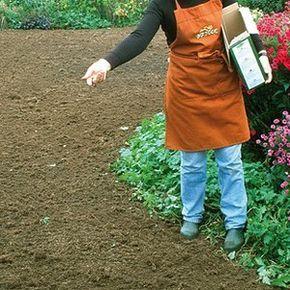 gazon les 5 tapes pour refaire sa pelouse jardinage. Black Bedroom Furniture Sets. Home Design Ideas