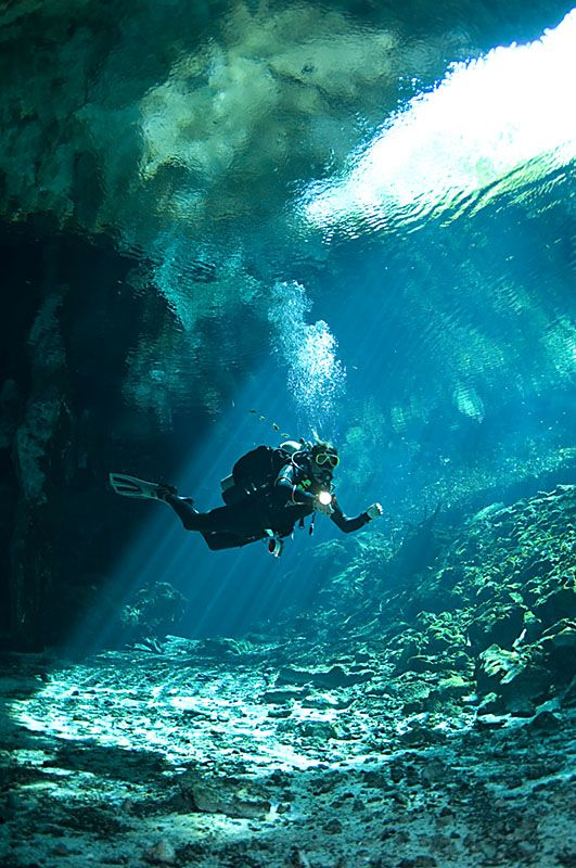 Cave diving in Cenotes, Mexico.  The best diving experience I've ever had.