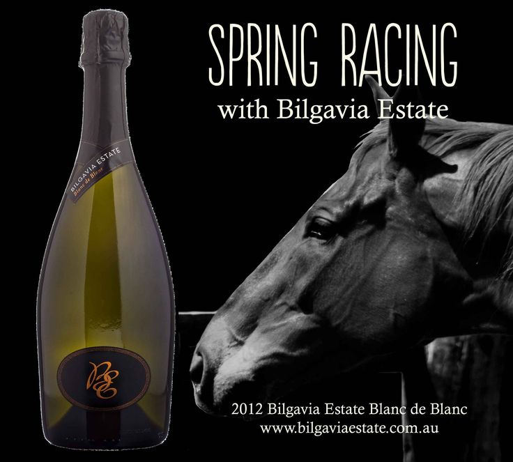 Bilgavia Estate Blanc de Blanc from the world renowned Hunter Valley in NSW. A good way to enjoy the Spring Racing Carnival #HorseRacing #Champagne http://wine.bilgaviaestate.com.au/2012-bilgavia-estate-blanc-de-blanc/