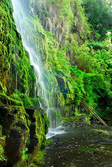 Erskine Falls, Victoria. Someday i will see this