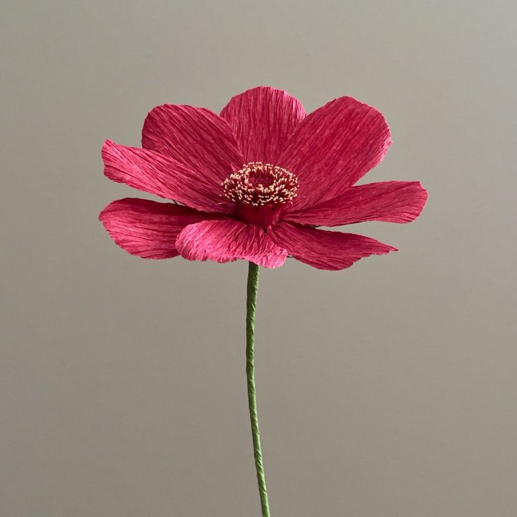 Crepe Paper Chocolate Cosmos, Single Stem - Wedding Flowers - Home/Office Decor - Florist Supply - Paper Flowers by NectarHollow on Etsy https://www.etsy.com/listing/463849112/crepe-paper-chocolate-cosmos-single-stem