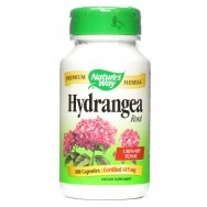 Hydrangea Root - naturally dissolves ganglion cyst??Ganglion Cyst