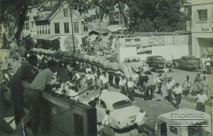 Chinese optocht in de straten van Paramaribo, met een Chinese draak.  Datum: Locatie: Paramaribo, Suriname Vervaardiger: Inv. Nr.: 39-18 Fotoarchief Stichting Surinaams Museum