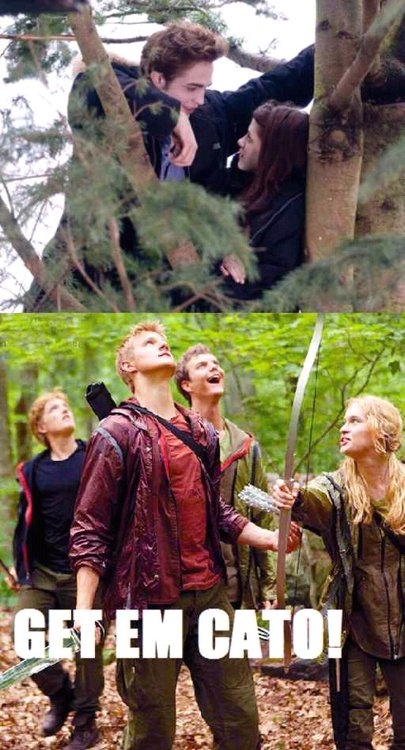 Pin by Victoria Mouse 2662 on The Hunger Games   Hunger