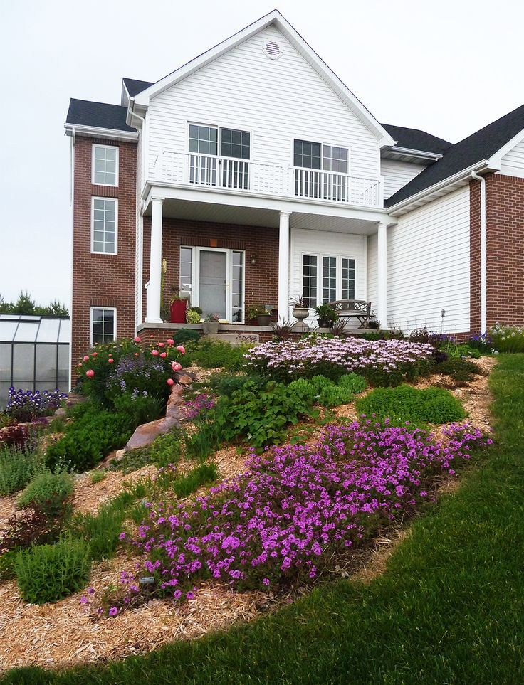 7 Of The Best Plants For That Frustrating Slope In Your Garden Sloped Garden Small Front Yard Landscaping Sloped Backyard