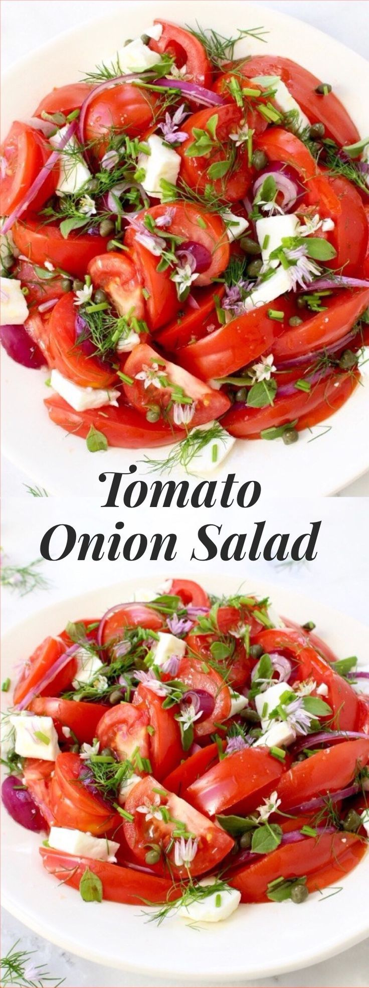 Tomato Onion Salad Recipe   http://CiaoFlorentina.com @CiaoFlorentina