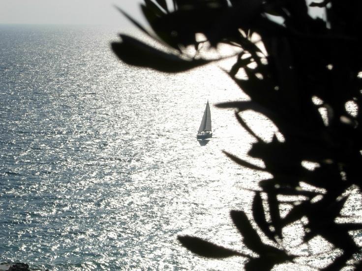 Ligurian landscape