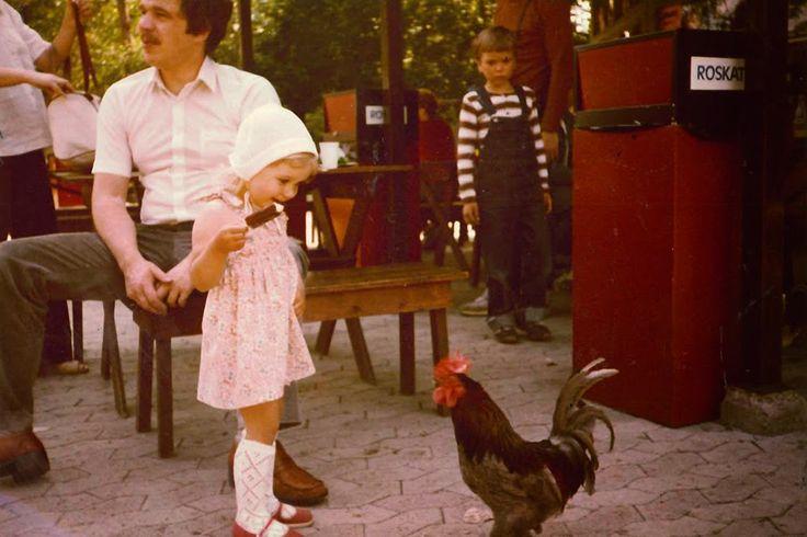 Lasten Eläintarhassa vuonna 1981. #särkänniemi #sarkanniemi #tampere