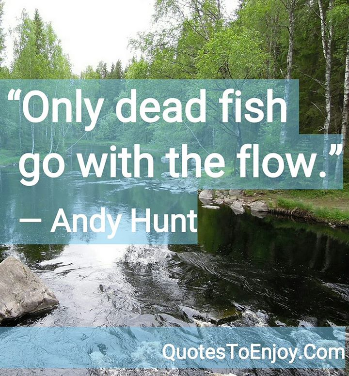 Fish Motivational Quotes: Best 25+ Fish Quotes Ideas On Pinterest