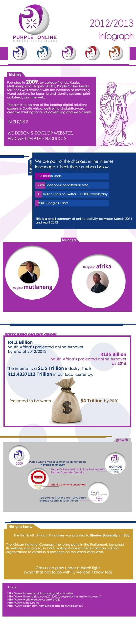 Purple Online Media Solutions 2012/2013 Infograph