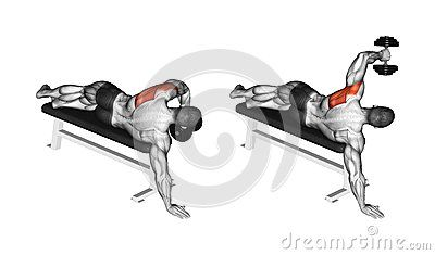 Exercising. Lead hand with a dumbbell rear deltoid