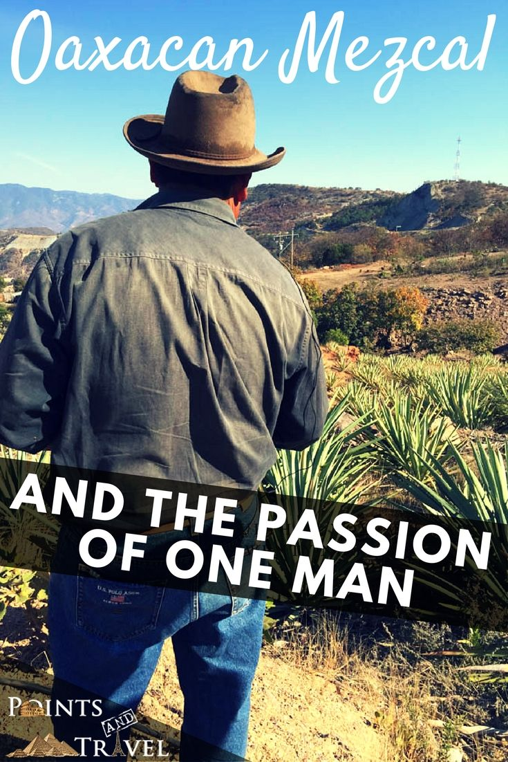 Oaxacan Mezcal and the Passion of One Man, Oaxaca, Mexico