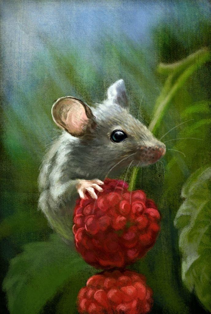 Jeremy Norton Illustration - Mouse feeding | Jeremy Norton ...