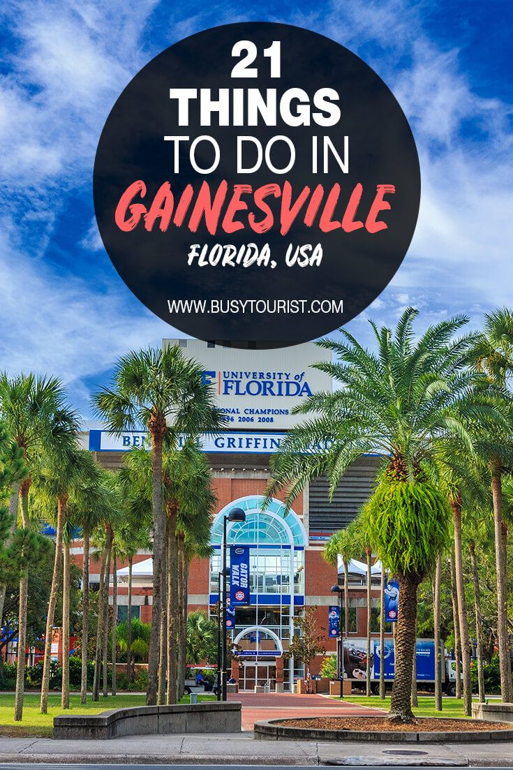 21 Fun Things To Do In Gainesville Florida Cool Places To Visit Road Trip Fun Gainesville Florida