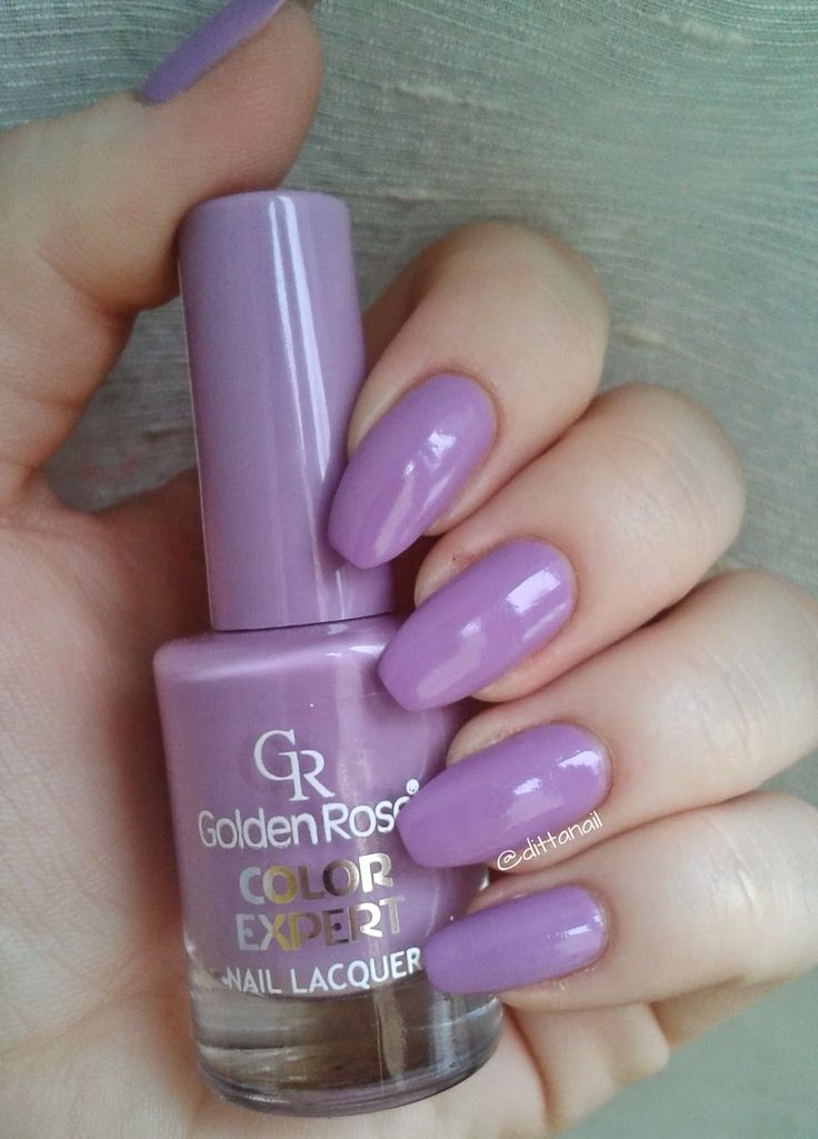 GoldenRose Color Expert nr 66