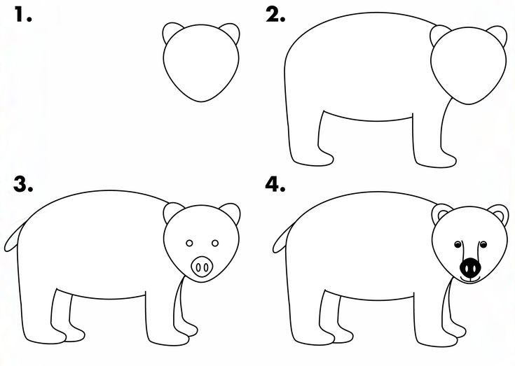 how to draw bear - photo #3