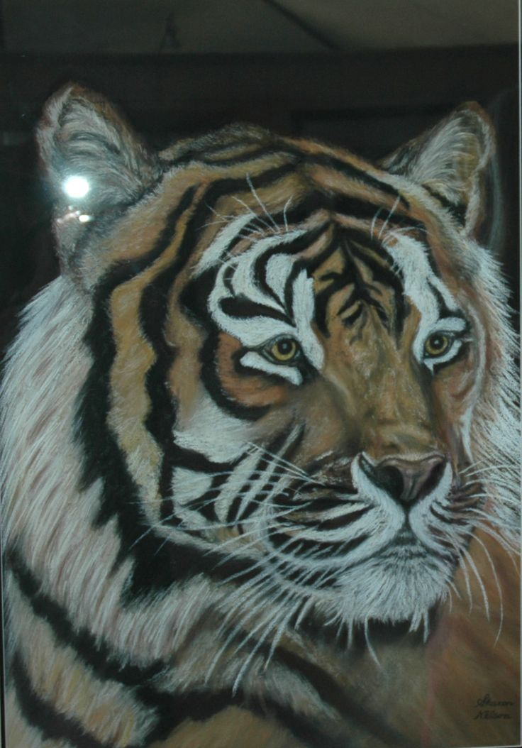 TIGER BY SHARON VALITUTTO AKA SHARON NELSON