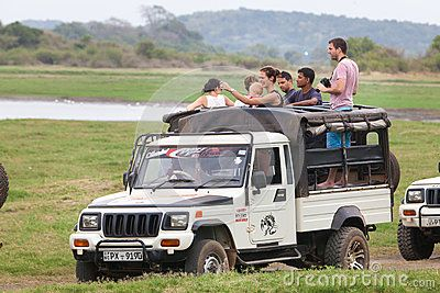 Safari. Off-road jeep with family visitors. Minneriya. Sri Lanka.