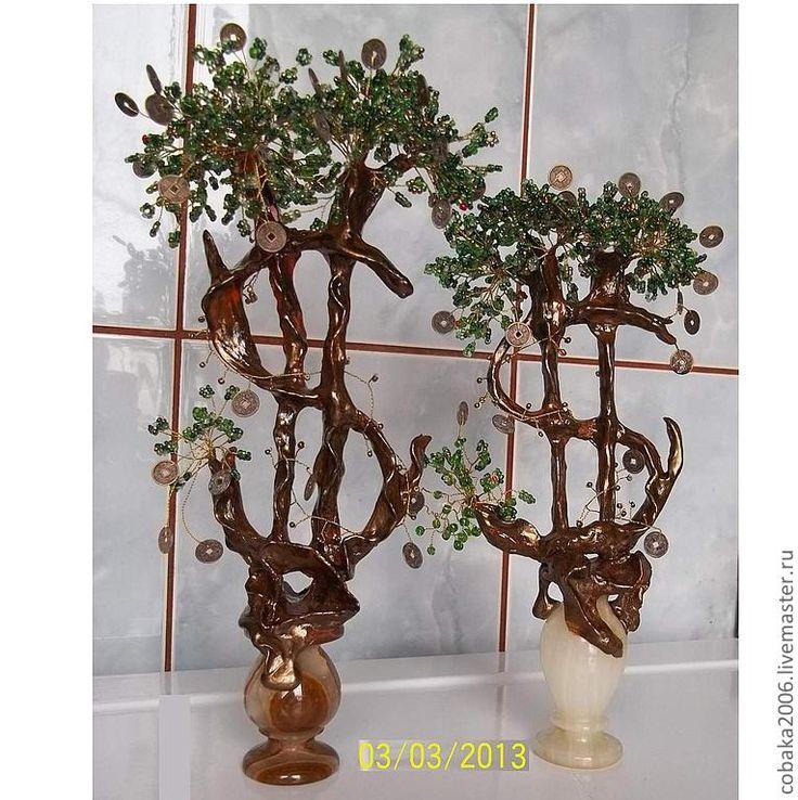 Купить Долларовое дерево (Денежное дерево) - денежное, дерево, бонсай, тотем, талисман, подарок
