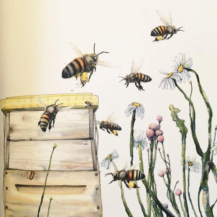 """Barnen: """"Vi vill ha ett djuuuur!"""" Pappan: *köper 30 000 bin* Idag har vi (ihop med kompisar i typ grannhusen) blivit med bikupa. Hoppas de ska trivas! Alla 30 000. *svälj* (Bild från """"Handbok i naturlig biodling"""", ritad av @marcusgunnar )."""
