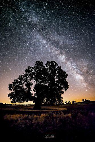 La Encina y la Vía Láctea