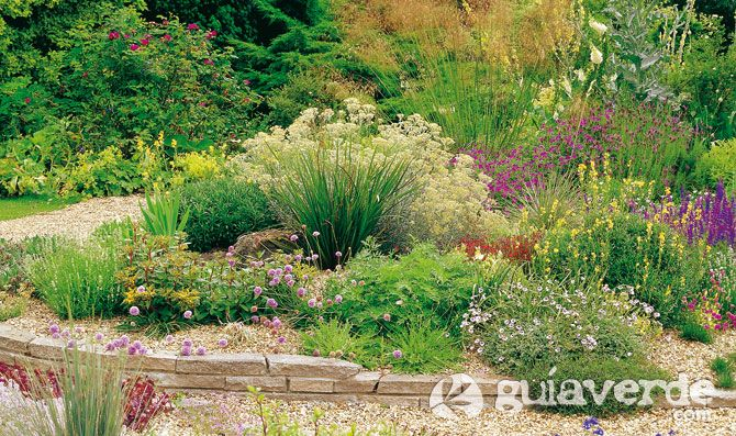 jardín de bajo mantenimiento, con plantas resistentes a la sequía