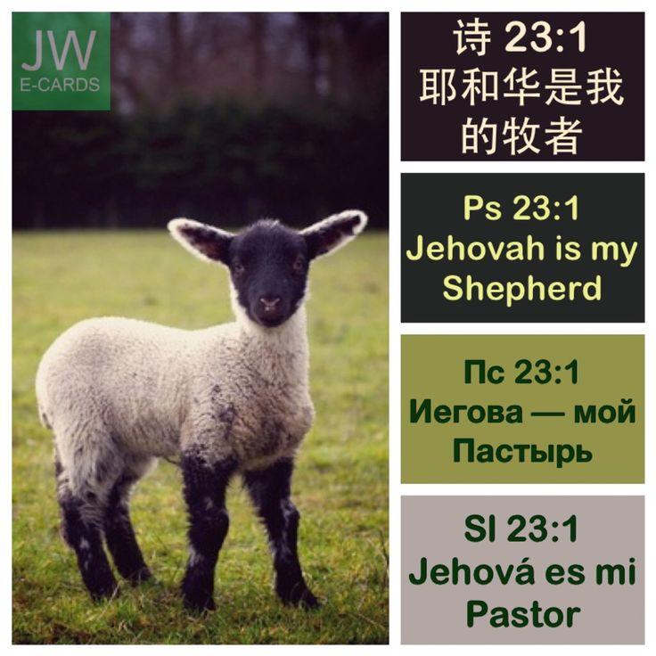 Psalms 23:1 — Jehovah is my Shepherd. I will lack nothing. 诗篇 23:1 — 耶和华是我的牧者, 我必一无所缺。Псалом 23:1 — Иегова — мой Пастырь. Я ни в чём не буду нуждаться. Salmos 23:1 — Jehová es mi Pastor. Nada me faltará.