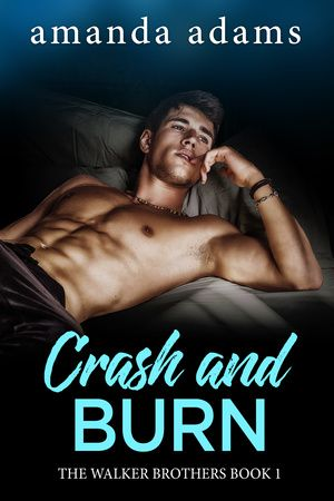 EskieMama & Dragon Lady Reads: Promo Tour: Crash & Burn by Amanda Adams