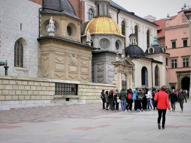 WWW Wiersze Wycieczki Wspomnienia: Magnolie na Wawelu 2017