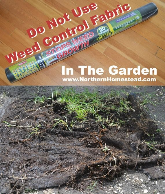 Do Not Use Weed Control Fabric In The Garden Gardens The O 39 Jays And Homesteads