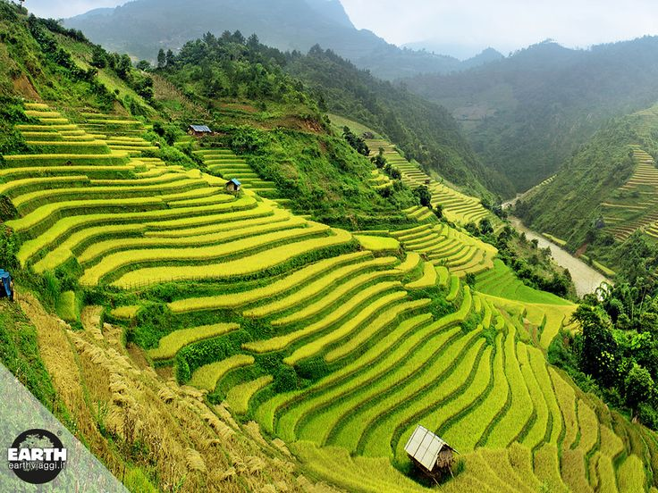 Istantanee di #viaggio in #Vietnam