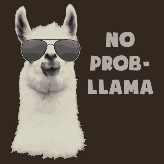 Llama puns t shirt, hoodie, mug, case, skin and more! Want to show off you love for puns? No Prob-Llama!