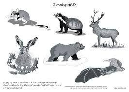 Výsledek obrázku pro zimní zvířátka