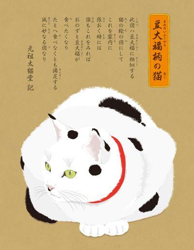 豆大福柄の猫