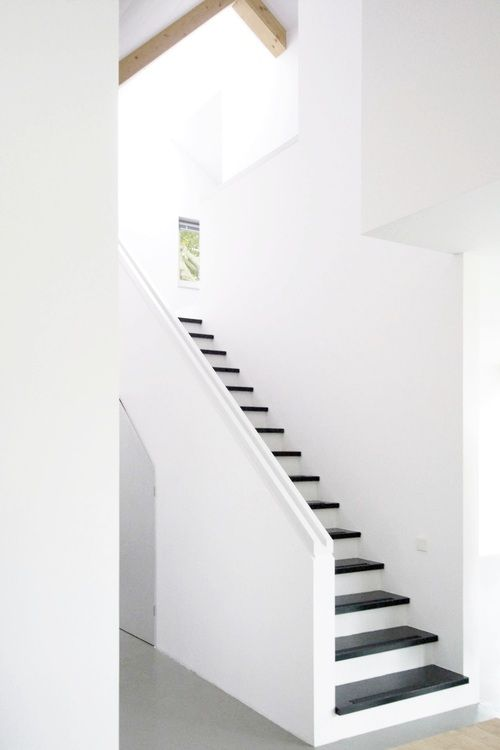 Dramatic Stairs In Black And White