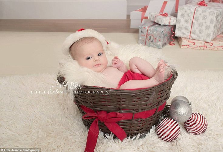 Eyes open: Another is wide awake while lying in a basket