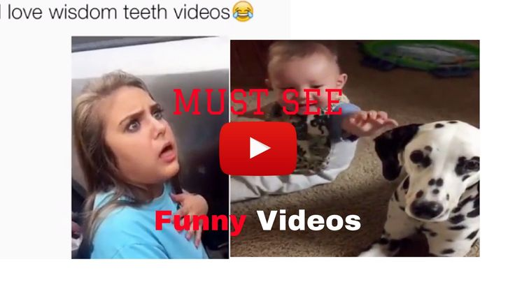 KIDS FUNNY VIDEOS: WISDOM TEETH,BABIES,DOGS AND EPIC FAILS LOL