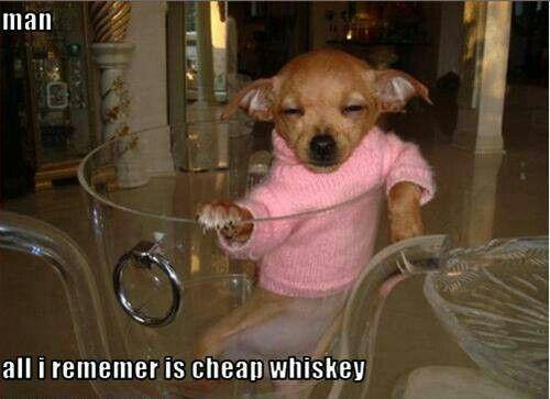 Cheap whisky