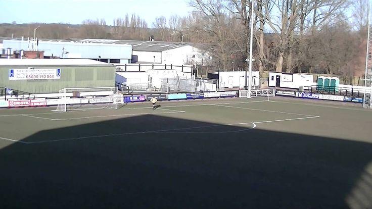 Highlights Video: Stafford Rangers v Spalding United Match highlights 7/...
