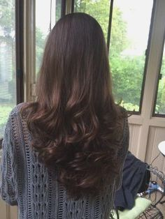 Layer Cut Hairstyle For Long Hair Back View Victoria