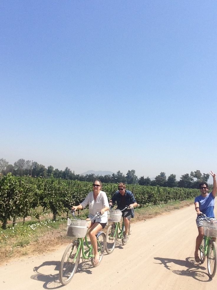 Wine tasting and cycling in Santiago de Chile